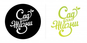 Лого вариант 1. Цвета